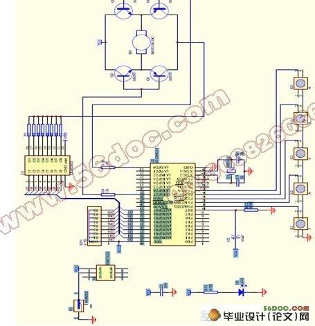 采用c语言编程,实现了直流电机的调速和正反转控制.